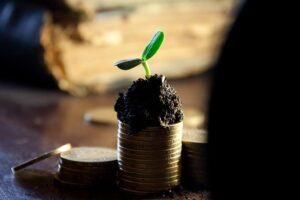 Jaką część zysku można przeznaczyć na wypłatę dywidendy?